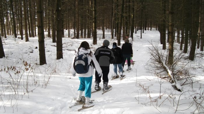 Snowshoes and Snow-Clues at Cold Creek