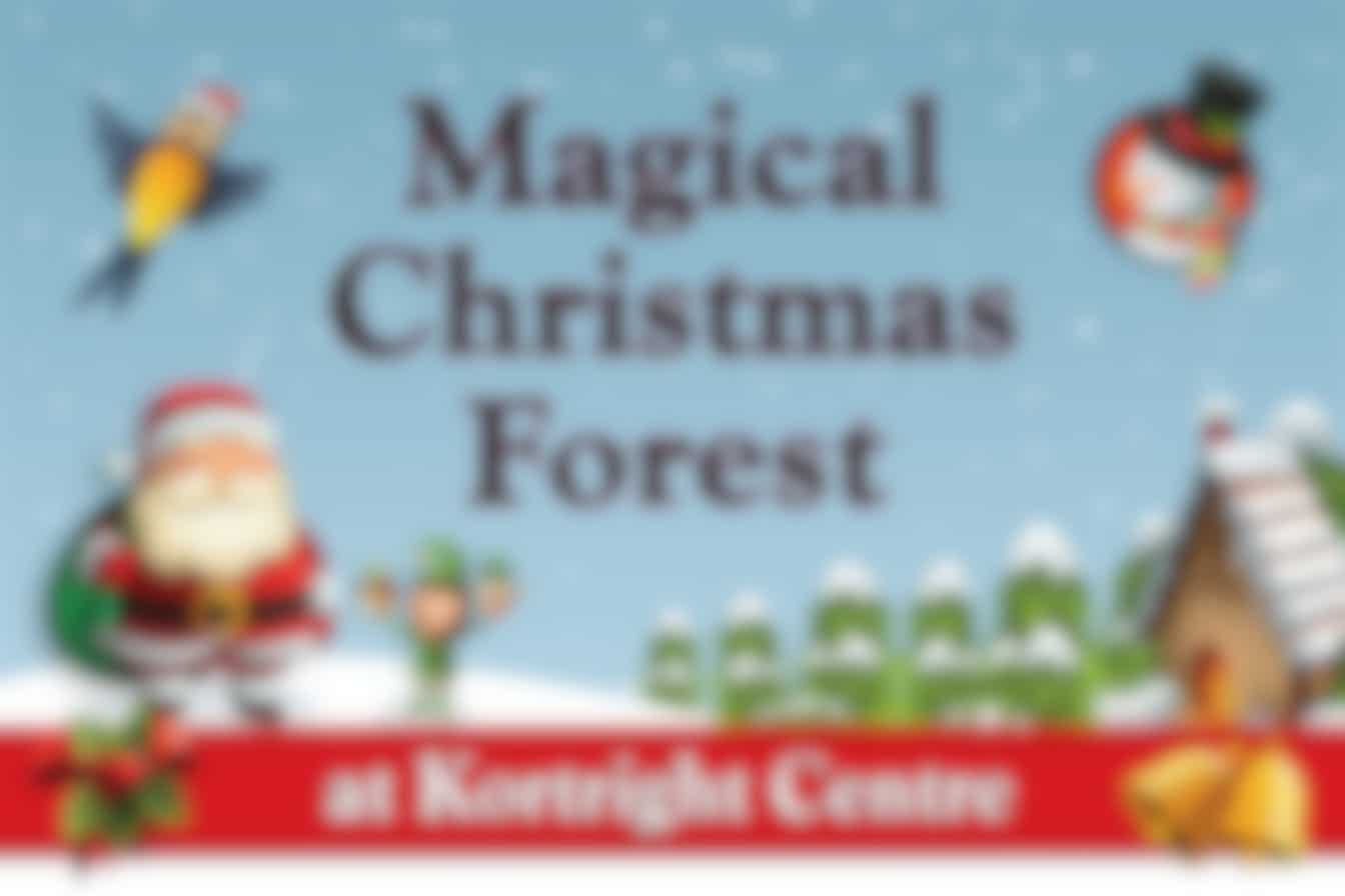 Magical Christmas Forest