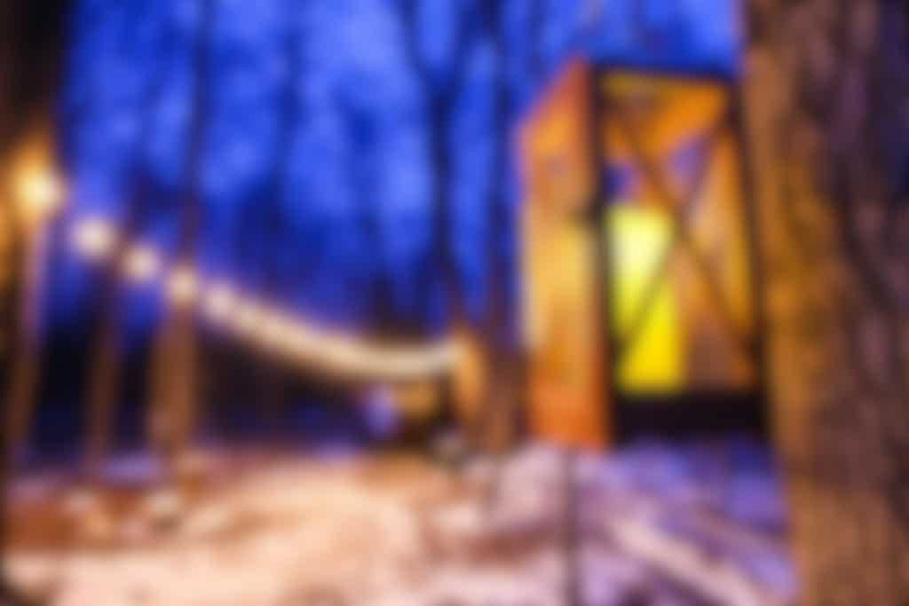 Maple Syrup by Lamplight at Island Lake Conservation Area
