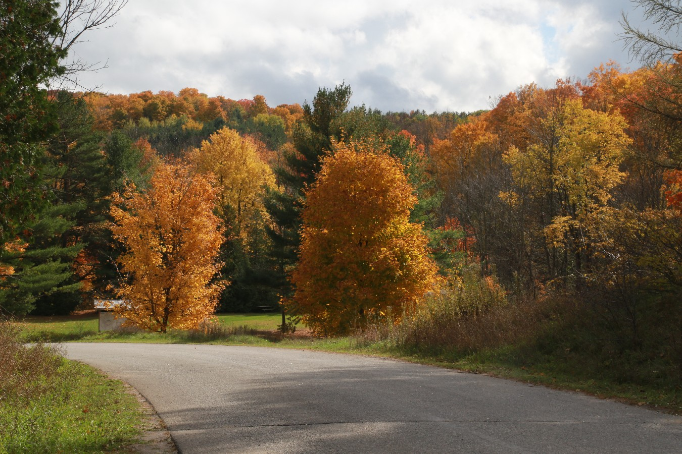 Albion Hills Conservation Area and Campground